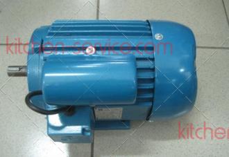 BQ818_316_74 Электродвигатель мешалки для фризера Starfood BQ818PY,BQ316M