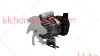 Насос (помпа) Version 1 для льдогенератора BREMA (C23002)